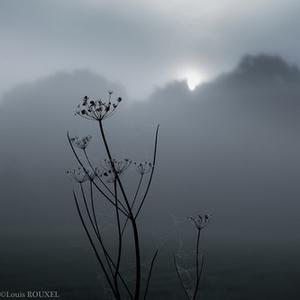 01-11-ahh le soleil-pf.jpg