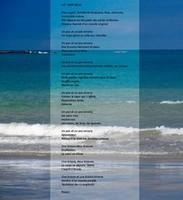 14-mer belle-2014-AB-mini_1599.jpg