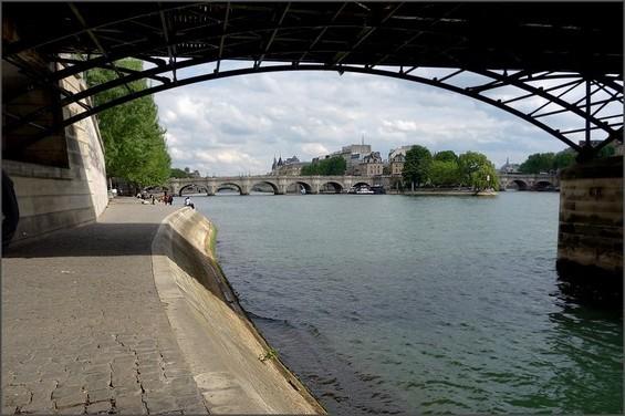 2015 02 13-photo du jour-annick-Sous les ponts de Paris 2014.jpg