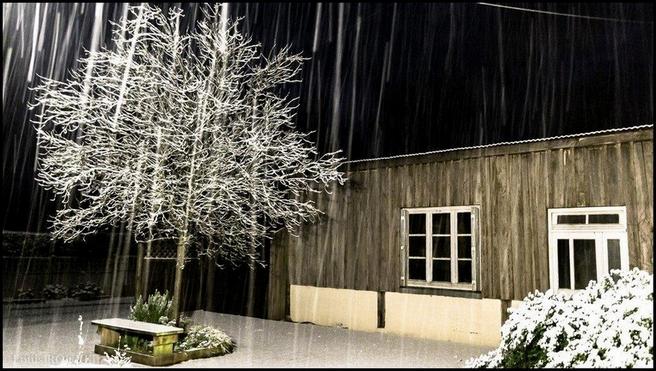 2015 03 08 photo du jour louis-Tombe la neige.jpg