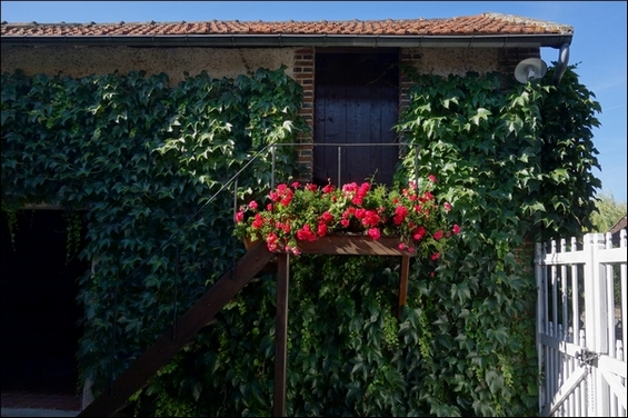 2015 06 25 photo du jour annick balcon bourguignon-eQ_c.jpg