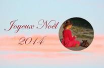 24 12 2014-photo du jour-joyeux noel 2014c 3 - mini.jpg