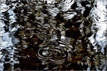 6-pfdes-ronds-dans -l-eau-bayeux-2014_0087.JPG