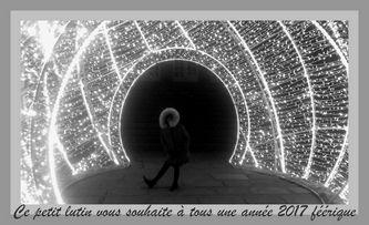 anna-lutin-pf-903.jpg