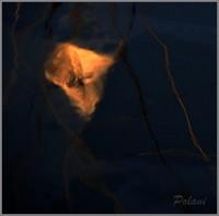 brillant-météore-saint-malo-2013_0372mini.JPG
