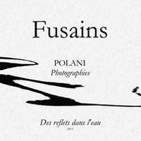 Fusains 01.jpg