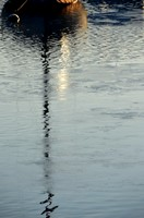 Passion photo, reflets à foison